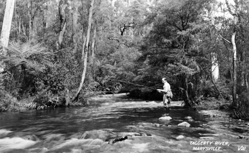 Taggerty River, 1930s (State Library of Victoria)